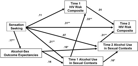alcohol use path model