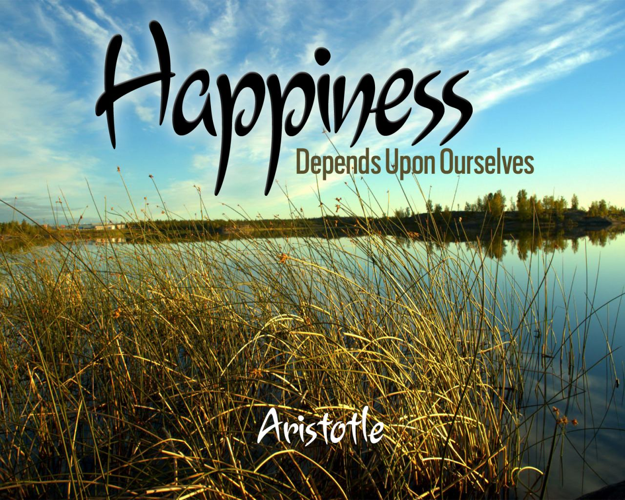 happiness according to aristotle Cami phameconomics - 69 december 2012compare and contrast the aristotelian and the utilitarian views of the individual's happiness happiness is a topic that is and has bee.