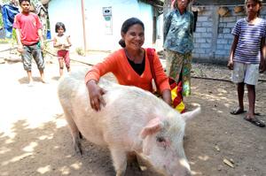 Timorese-farmer1