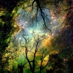empaths crystal children dreams
