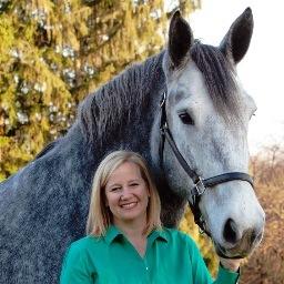 Rebecca Yuhasz Smith teal horse