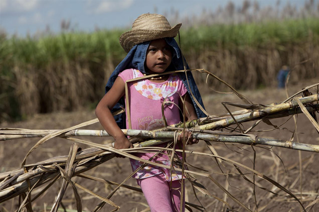 bolivia-child-work-cane4