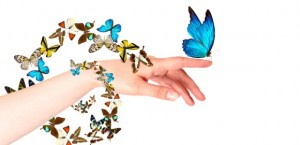Releasing_butterflies