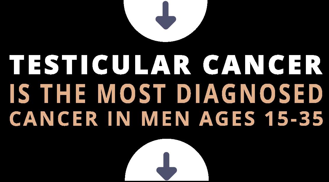 MO-TesticularCancer