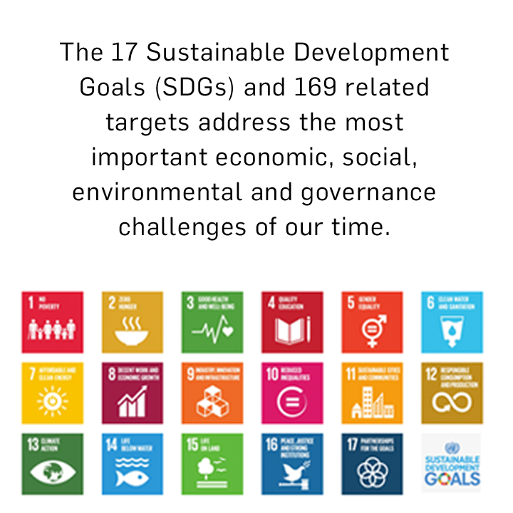 2030 Agenda for Sustainable Development