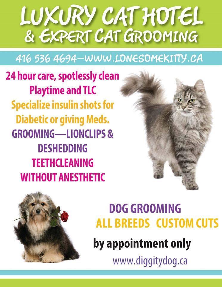 Cat Diggity Dog Grooming