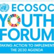 Generation 2030 makes a stand at UN Youth Forum